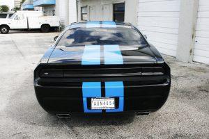 Racing Stripes Fort Lauderdale Florida